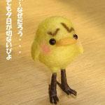 足長族ピヨちゃん