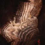 「梟」owl 50.0×28.0/2015