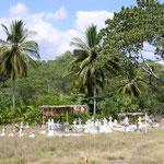Der schönste Friedhof der Welt!
