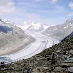Der grosse Aletschgletscher ist der flächenmässig grösste und längste Gletscher der Alpen. Er befindet sich auf der Südabdachung der Berner Alpen im Kanton Wallis, Schweiz. Länge 22,75 km (einschl. Jungfraufirn) Fläche 81,7 km²