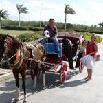Eine anderthalbstündige Kutschenfahrt durfte nicht fehlen. Vreni war besorgt, ob das Pferd nicht durstig sei!?