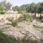"""Byrsa war eine mauergeschützte Festung über dem Hafen der antiken Stadt Karthago im heutigen Tunesien. Der Hügel, auf dem diese Zitadelle stand, hieß auch Byrsa. Aus dem Phönizischen hergeleitet bedeutet der Name Byrsa """"Zitadelle""""."""