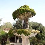 Dieser bemooste Brunnen stand vor dem Kloster.