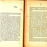 arthur miller -  the misfits and de ontworlden 1th pages.
