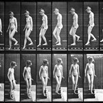 edward muybridge - nude descending the stairs