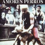 alejandro gonzález unárritu - amores perros