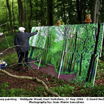 david hockney - en plein air