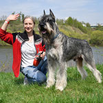 Harley at IDA Eurasia 2018, 05/05/2018 - Best Veteran, 06/05/2018 - CACIB, BOB, Champion of  SHOW EURASIA