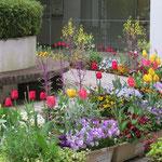 中庭が花でいっぱいになった県立大船渡病院