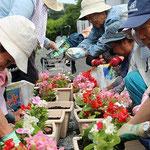 新たな支援先、角河原仮設住宅にて。どこに行っても、花に触れるときは皆さん笑顔です。。