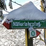 Naturlehrpad