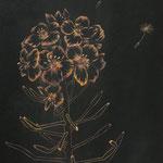 ≪彼方へー菜の花ー≫2019年 P3号
