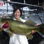 ■釣り人:玉置氏                 ■場 所:下物周辺                 ■リ グ:ネコリグ                 ■サイズ:57cm