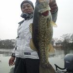 ■釣り人:宇野様                     ■場 所:カネカ沖                     ■リ グ:インチワッキー                     ■サイズ:54cm