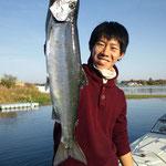 ■釣り人:山崎様                 ■場 所:近江舞子周辺                 ■サイズ:50~40cm 十数本