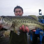 ■釣り人:新久保氏                 ■場 所:カネカ沖                 ■リ グ:テキサス                 ■サイズ:53cm