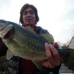 ■釣り人:北川氏                 ■場 所:アクティバ沖                 ■リ グ:チャターベイト                 ■サイズ:51cm