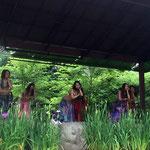 【菖蒲祭り 宮地嶽神社】シェヘラザード El Hauntor2