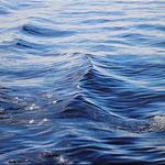 05/2018 Öl auf Leinwand oil on canvas 180*120 PB