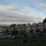 The painted Ladies...