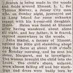 Brooklyn Eagle - WANDERS IN WOODS ALL NIGHT WHEN FATHER DISAPPEARS - found by John Stattel - Dec. 31, 1919