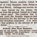 The Newtown Register - Vegetable Thieves - Dec. 6, 1900