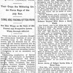 "New York Sun - ""Bargain Day"" Draws Big Marget Crowd October - Oct. 18, 1914"