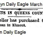 Brooklyn Daily Eagle - Charles Goeller -March 3, 1883