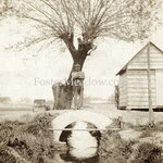 "Erb, Fredrich Simon -  Elmont Rd.,  Elmont - ""Fosters Meadow Creek"" ran parallel to Fosters Meadow Rd."
