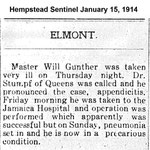Hempsteade Sentinel - Master Will Gunther - Jan. 15, 1914