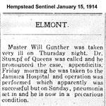 Hempsteade Sentinel - Master Will Gunther - Jan. 15, 1914