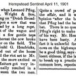 Hempstead Sentinel - Leonard Pflug and the cow - April 11, 1901