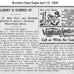 Brooklyn Daily Eagle - Elmont Stirred Up - Daniel Stattel - April 10, 1906