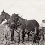 Hoeffner, Anton Philip (AP), Jr., Rosedale, LI - 1 row potato planter