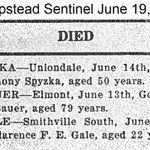 Hempstead Sentinel - George Bauer - Died - June 19 , 1919