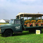 Schmitt Farms - Matt and Deborah Schmitt, 3355 Sound Ave, Riverhead,  NY