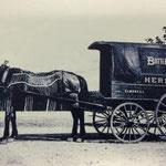 Herman's Elmont, LI - 1905