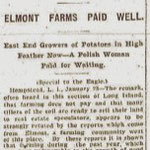 Brooklyn Daily Eagle - Farming On Long Island By No Means Played Out - Jan. 24, 1905