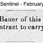 Hempstead Snetinel - Anthony Bauer Mail Carrier - Feb. 23, 1905