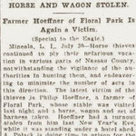 Brooklyn Daily Eagle - Horse and Wagon Stolen - July 30, 1908