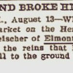 Brooklyn Eagle - Fell And Broke His Arm - Aug. 13, 1900