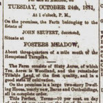Hempstead Sentinel - Farm For Sale - Sept. 1871