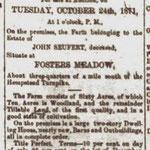 Hempstead Sentinel - Farm For Sale - Sept. 1871