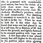 Hempstead Sentinel - Nicholaus Hoeffner and his plowing - March 22, 1900