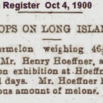 Newtown Register - Crops on Long Island - October 4, 1900