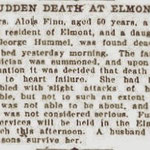 Brooklyn Daily Eagle - Suden Death At Elmont - Dec. 29, 1906