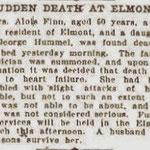 Brooklyn Daily Eagle - Suden Death At Elmont - Dec. 29, 1906