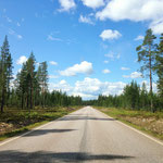 entering Sweden: Route 311, a remote provincial road, heading south again