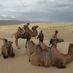 we rented some camels to take a ride to the sand dunes. After one hour I nearly got seasick and decided to continue on my own