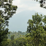 Some fine views of Mt Kahuzi Biega